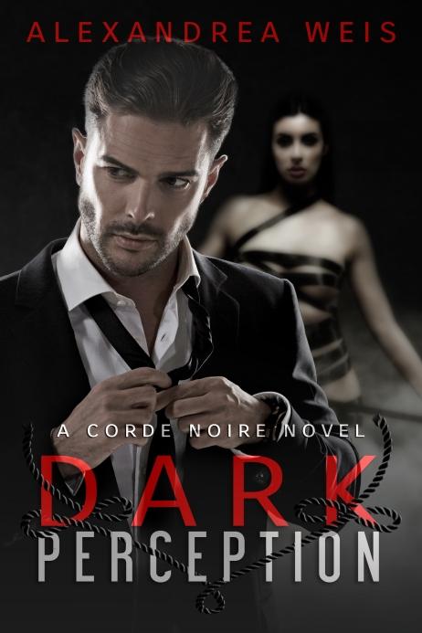 Copy of DarkPerceptionEbook.jpg