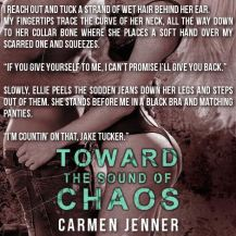 toward the sound of chaos teaser 2