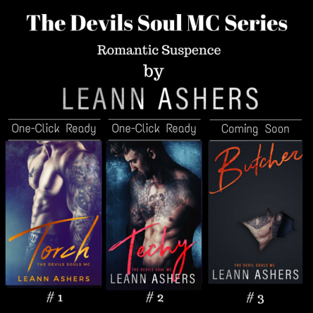 the devils soul mc series
